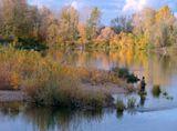 Белая река, осень, рыбак