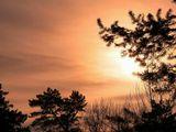 С Новым 2012 Годом! Успехов! Удачи! Счастья и здоровья!