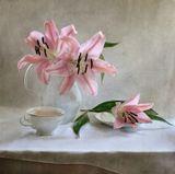 Цветы, лилии, фотонатюрморт