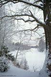 Вид на реку Сестра.Подмосковье.Деревня  Карманово. Пасмурно. пейзаж,природа,зима.