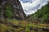 Из трека в Перуанских Андах