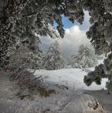Ай-Петри, горы, зима, Крым