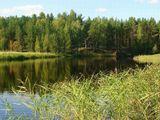 Селигер, пейзаж,лето