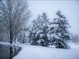Тёплым и бесснежным был январь в Денвере и приходится вспоминать снегопады в октябре и декабре.