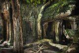 Камбоджа.Храмовый комплекс Ангкор Ват, воздвигнутый в 1150 году, состоящий из нескольких храмов.  Джунгли закрыли Ангкор от всего мира зеленым занавесом листвы, и огромные тропические деревья своими корнями практически уничтожают каменную кладку,  строения покрыты мхами и лишайниками... Принадлежит к Всемирному наследию и находится под охраной ЮНЕСКО.