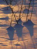 игра света от лучей заходящего солнца и тени на снегу