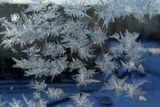 категорически всех поздравляю с последним днем зимы!