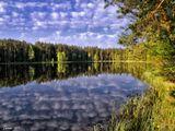 синее озеро лес природа озеро красота