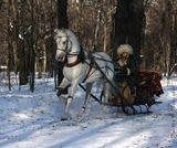 орловский рысак Лапландец под управлением наездника Леонида