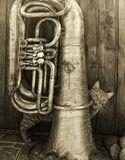 Тяга к музыке и цветным металлам ! :0)