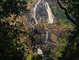 Водопад Дудсагар один из самых высоких в Индии.Протяженность водного потока 603 метра. Дудхсагар переводится как «молочный океан». Таким поэтическим названием водопад обязан молочно-белому цвету воды.