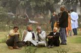 На ежегодном зимнем фестивале роз в Дели.