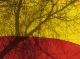 Красный цвет- цвет энергии, жёлтый- радость,счастье, богатство, тень - отголосок нашей жизни. Я -Никто и Я Нигде, Я здесь, Я там. Всего лишь мысль, живущая в тебе. Могу я изменить энергию твою И радость омрачить, Как тень от дерева в жару...