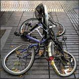 """Из серии """"Из жизни велосипедов"""""""