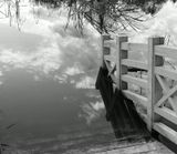 ... но через воду. Москва. Парк Дзержинского (рядом с Ботаническим). 2012 год.