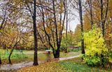 Теплая осень    пейзаж,природа,осень