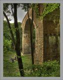 немецкий мост в лесу