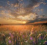 Небо - птица голубая,Растопырив перья облака,Смотрит солнцем не мигая,Треснула ль земная скорлупа.