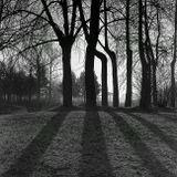 парк, деревья, Киев-88, утро, ранняя весна