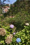 Португалия, г. Синтра, сентябрь 2008 г.