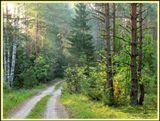 Прекрасное время суток - раннее утро. Воздух просто обволакивает приятной свежестью и нежностью