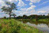 пейзаж,природа,лето