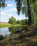 В летний знойный день на пруду.