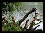 По православным понятиям, потерять нательный крест не так страшно, как его найти и просвоить. Проливной дождь этой субботы. Озеро