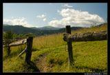 Снова Карпаты, приблизительно на высоте 400 м. Эта дорога ведет мимо домов и участков наверх, в горы, мимо подъемника.  Гора Тростяна, пос. Славское, Украина.