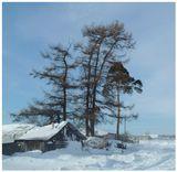 Холодная весна 2011, метель в марте, деревня