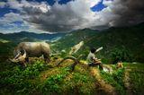 Северо-Восточный Вьетнам, провинция Лаокай на границе с Китаем.