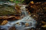 природа,лес,ручей,разное