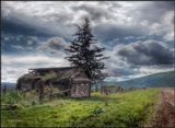 Провалена крыша, упавший забор,Оконые рамы - пустые глазницы...Безжалостно Время вершит приговор!И ель, словно крест на забытой гробнице...____________________________Одна из погибающих деревень Сибири. Жуткой печалью веет оттаких мест..