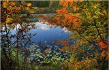 Золотая осень или Бабье лето