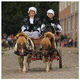 Ежегодно в третий четверг сентября в голландском городке Энкхаузен проводится конно-спортивный праздник.