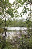 пейзаж природа озеро