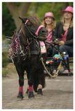"""Пони девочек катает,Пони мальчиков катает,Пони бегает по кругуИ в уме круги считает.Вот на площадь вышли кони,Вышли кони на парад,Вышел в огненной попонеКонь по имени Пират.И вздохнул печальный пони""""Разве, разве я не лошадь? Разве мне нельзя на площадь? Разве я вожу детейХуже взрослых лошадей? Я лететь могу, как птица,Я с врагом могу сразиться,На болоте, на снегу,Я могу, могу, могу."""