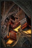 Lausanne-Cathédrale Notre Dame