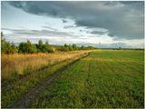 2006 год. Август. Вечер. Великий Устюг. Дорога в деревню Гремячево, вдоль берега реки Сухоны.