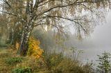 швеция, утро, туман, октябрь.