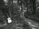 Эхо шагов уходящихслышу второй год,Звуки гитары щемящие,Напоминают вновь…