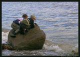 Поиски золотой рыбки в водах Нагаевской бухты Охотского моря =)