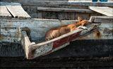 Консоль на рыбацкой лодке для подвесного мотора.