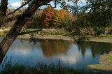 природа,осень,пейзаж,разное