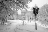 зима,природа,пейзаж,разное