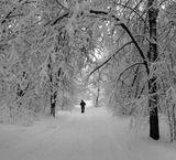 зима,природа,разное