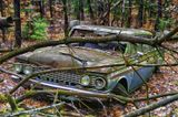 Deep in the woods of Maine.... a technicolor old car