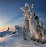 """""""Приснись мне, на лыжах бегущая Сольвейг...""""А.Прокофьев"""