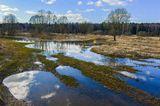 пейзаж,природа,весна,апрель,2013