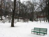 Скоро, скоро из мёртвых холодных оков Вырвет лес молодая весна, И с ветвей опадет седина Побежденных лучами снегов...  Скоро, скоро, смеясь, разбегутся ручьи На широкий зелёный простор, И раскинет земля разноцветный ковёр, И в кустах запоют соловьи...  Скоро, скоро черёмух душистых цветы Серебром забелеют в саду... И навстречу весне я с надеждой пойду В царство солнца, тепла и мечты!  Глафира Галина
